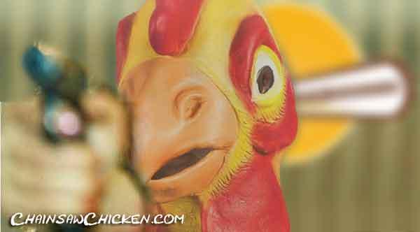 """""""Chicken Hawk"""" captured"""